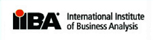 International Institute of Business Analysts.
